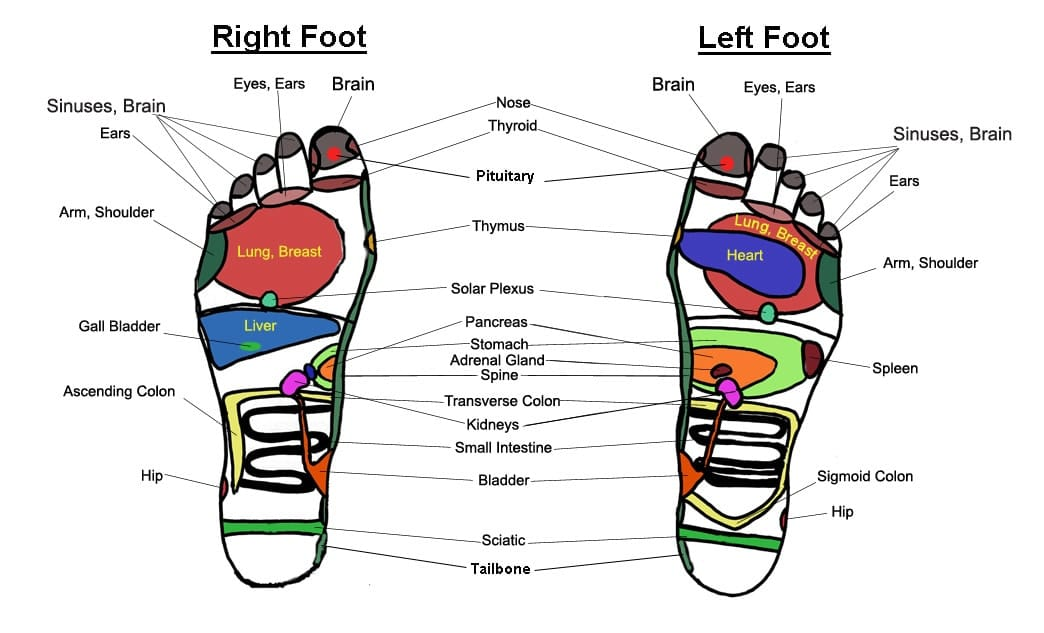 Foot-massage-chart-reflexology